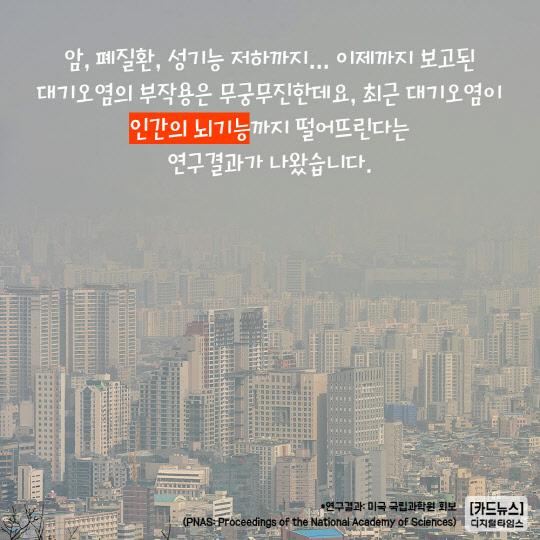 [카드뉴스] 오염된 공기 마시면 1년동안 배운 것 잊어버린다